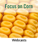 Webcast resource on corn crop management.