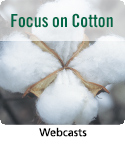 Webcast resource on cotton crop management.